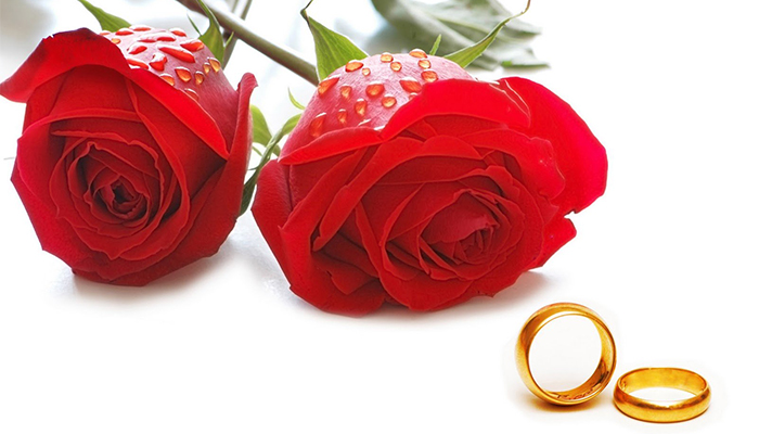 rose-day-your-first-step-to-love-week-red-rose